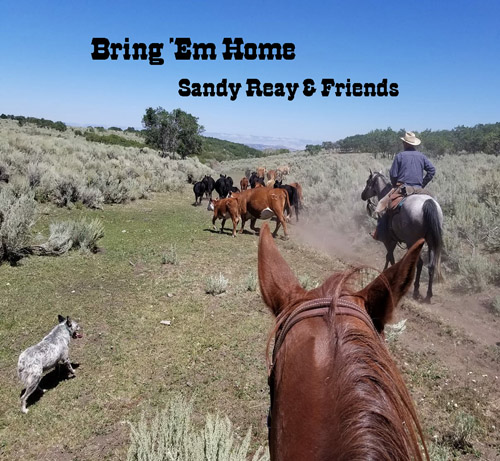 Bring Em Home Cowboy Music CD